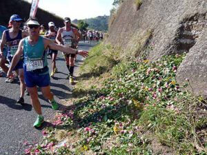 Flowers placed at Arthur's Seat during the Comrades Marathon